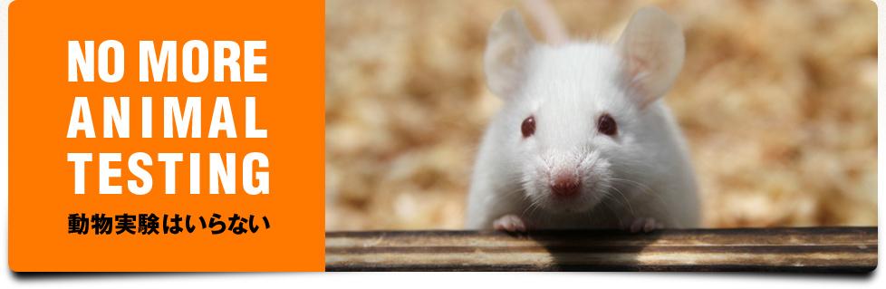 NO MORE ANIMAL TESTING - 動物実験はいらない