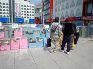 2013年千葉パネル展