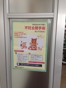 愛媛県いそざき動物病院