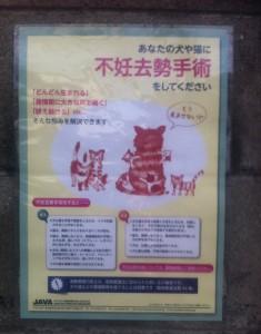 兵庫県加古川市にある工務店の外壁