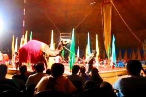 インドのサーカス2