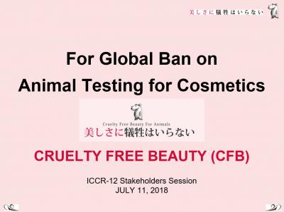 2018年化粧品規制協力国際会議の第12回会合スライド1